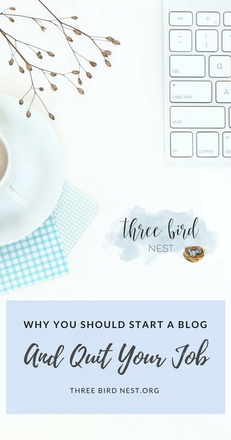 why you should quit your job and start a blog! Three Bird Nest