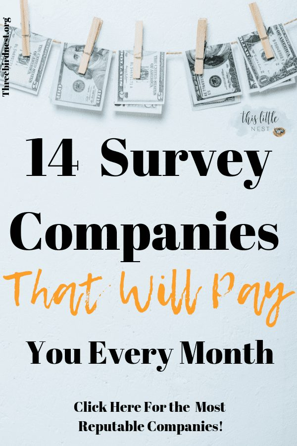 14 survey companies that will help you make money online #makemoneyonline #makemoney #extramoney #makemoneywithsurve#surveycompanies