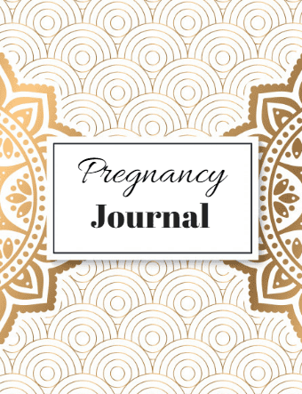 A 55 Page FREE Pregnancy Journal For You! Instant Download!