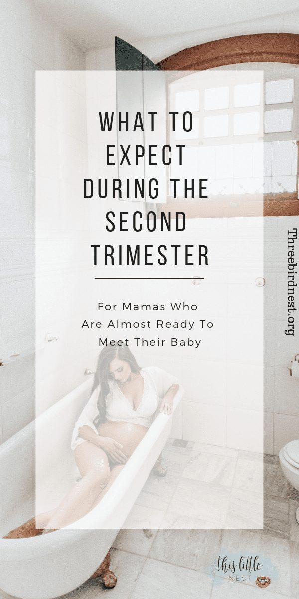 What to expect during the second trimester #secondtrimester #secondtrimestertodolist #pregnancy #pregnancytodolist #pregnant #childbirth #pregnanttodolist