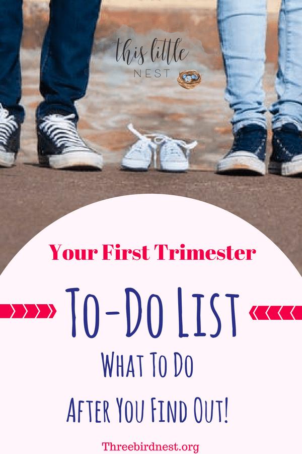 first trimester to do list #firsttrimester #I'mpregnant #pregnancy #pregnancytodolist #I'mhavingababy #whattodointhefirsttrimester