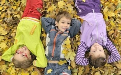 15 More Fall Crafts For Kids