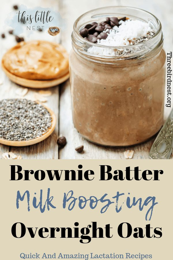 brownie batter overnight oats, Lactation recipes #lactationrecipes #milksupply #overnightoats, #breastfeedingrecipes